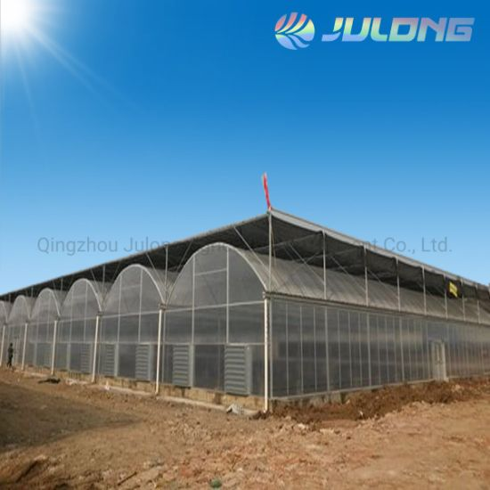 Agriculture Farm Commercial Use Polycarbonate Greenhouse with Vegetables Nursery Seedling Room