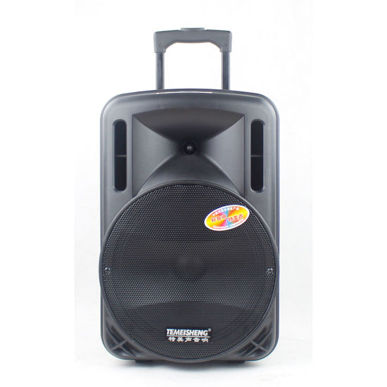 Temeisheng 12 Inch Subwoofer Outdoor Sport Taligate Trolley Bluetooth Speaker