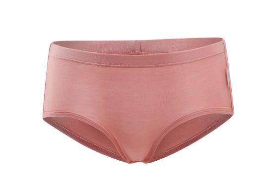 Wholesale Super Soft Womens Bamboo Underwear $1.5 Per Box (2PCS)