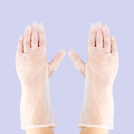Vinyl Gloves Disposable Anti-Static PVC Transparent Gloves