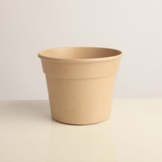 Custom Biodegradable Garden Planters Flower Pots