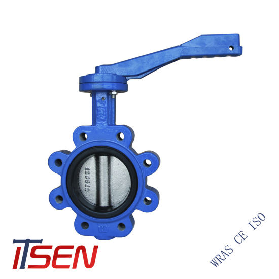Ductile Rion Body Stainless Steel Disc Lug Type Butterfly Valve with Lever Opreated