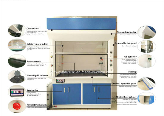 China Europe Design and Configuration Cheap Lab Equipment Lab Fume