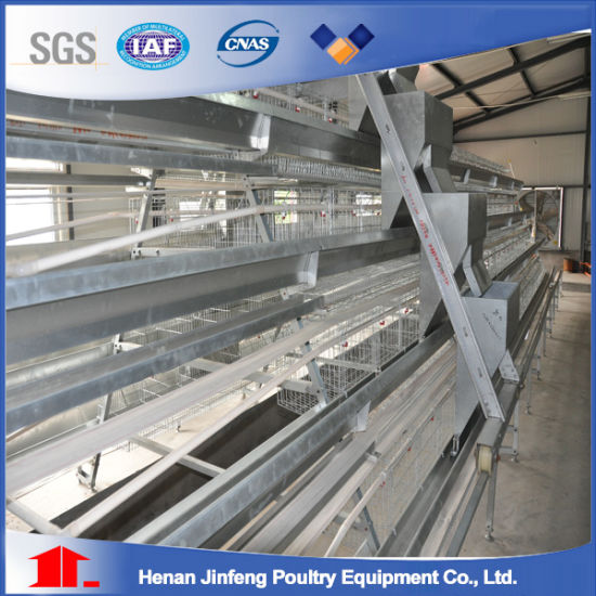 Poultry Equipment Battery Layer Chicken Cage in Nigeria, Africa