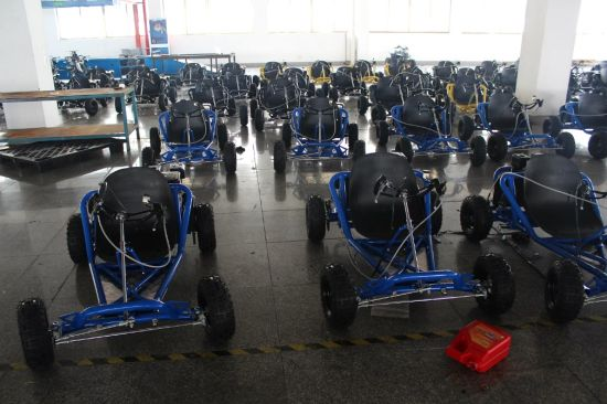 Made in China Mini Kids 196cc Super Go Kart and Gas UTV pictures & photos