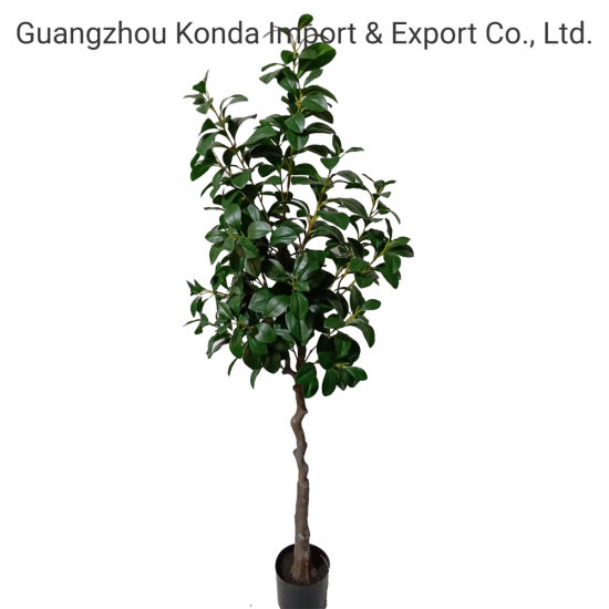 Artificial Watercress Tree Bonsai Tree Solid Wood Fabric Material Source Factory Supplier