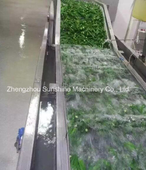 Ce Quality Automatic Bubble Fruit Washing Machine Vegetable Washer pictures & photos