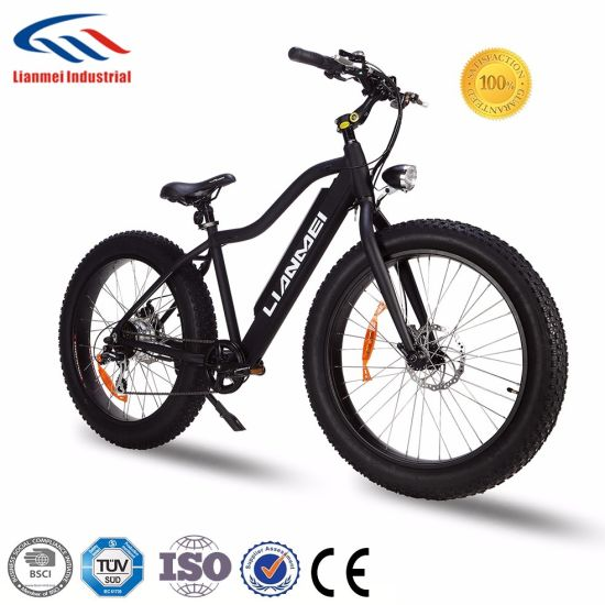 2017 New Fat Electric Bike Bicycle with 4.0inch Fat Tire Lmtdf-35L