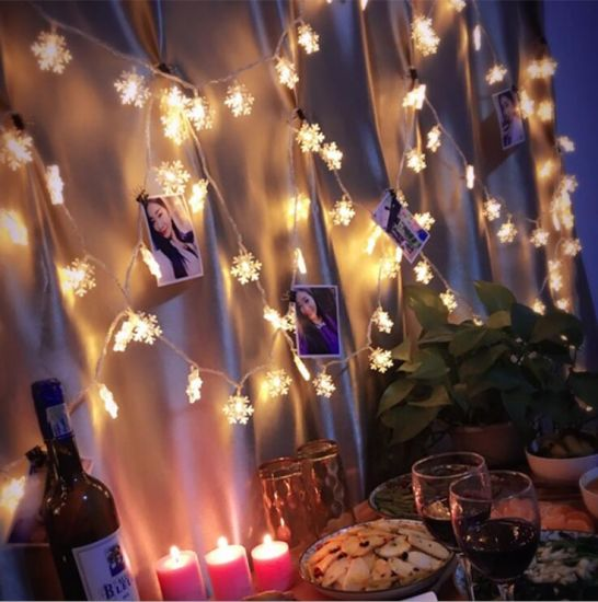 Christmas Decoration Light Snow Flower LED String Light pictures & photos
