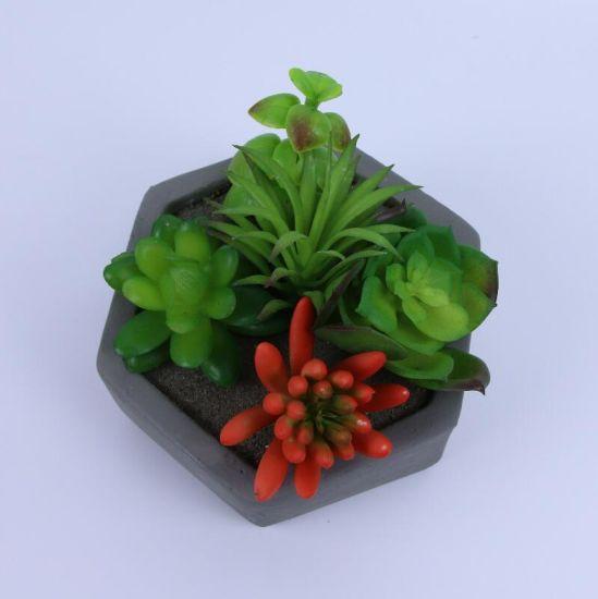 Ins Nordic Style Bonsai Succulents Decorative Plant Mini Potted Artificial Plants for Home Indoor Decoration Ornaments
