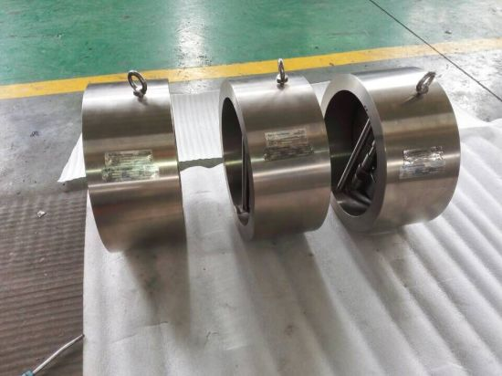 Titanium Alloy Dual Plate Wafer Check Valve pictures & photos
