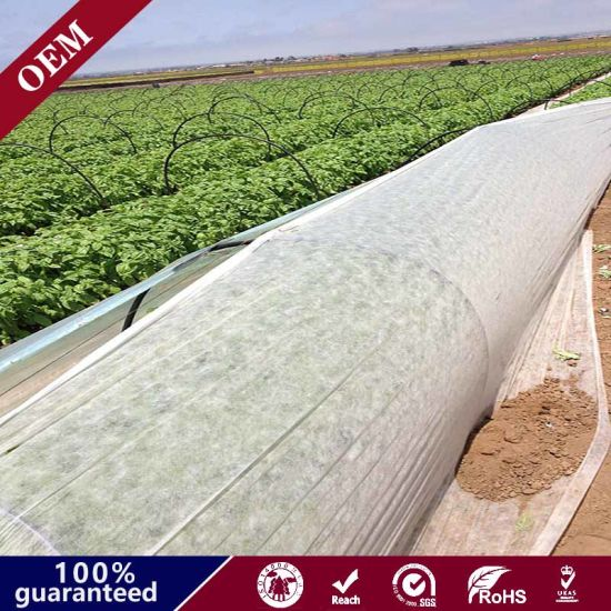 Weed Barrier Mat / Plastic PP Anti Weed Agro Weed Control Fabric