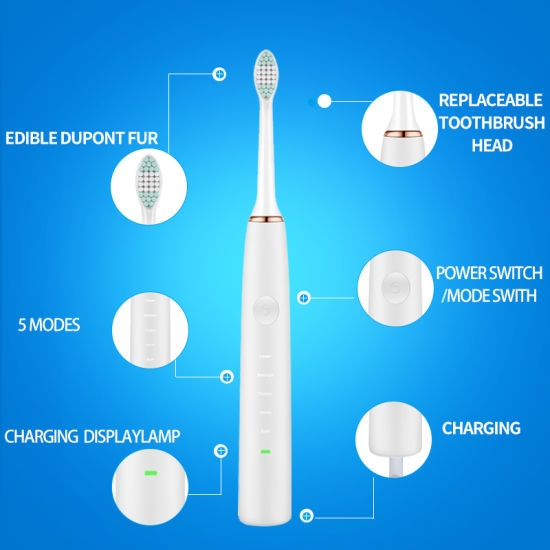 Hight Quatitly USB Charge Automatic Tooth Brushes Latest Electric Toothbrush pictures & photos