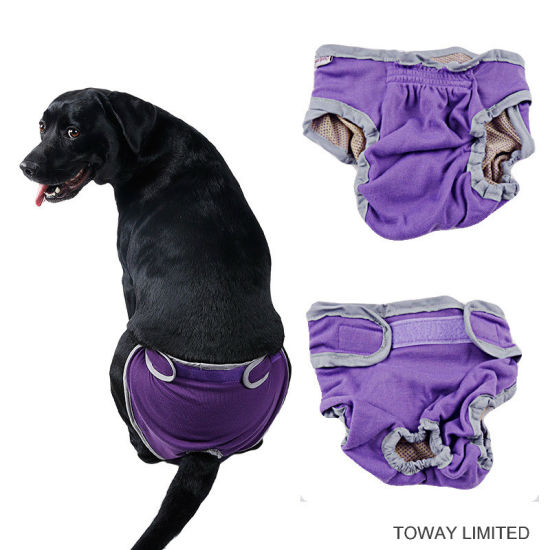 Female Dog Pants Pet Products Large Dog Clothes pictures & photos
