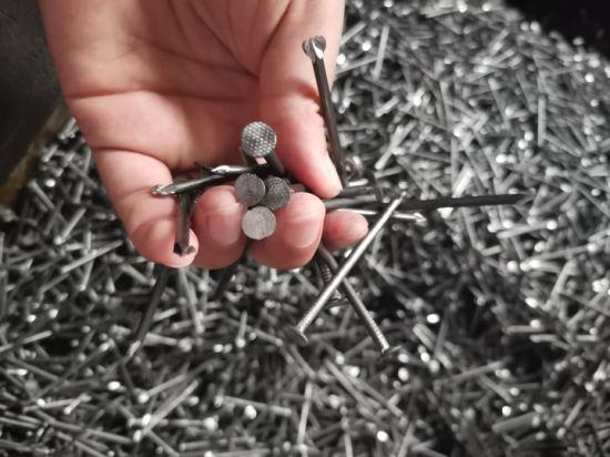Contruction Nails/ Common Nails/Commom Round Nail/Nail/ Iron Nails / Wire Nails