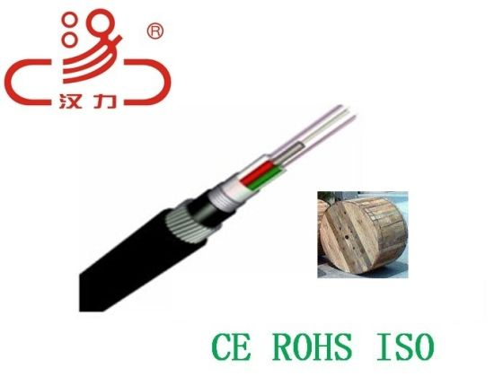 GYTS GYTA 24 Core Single Mode Outdoor Direct Buried Armored Fiber Optic Cable