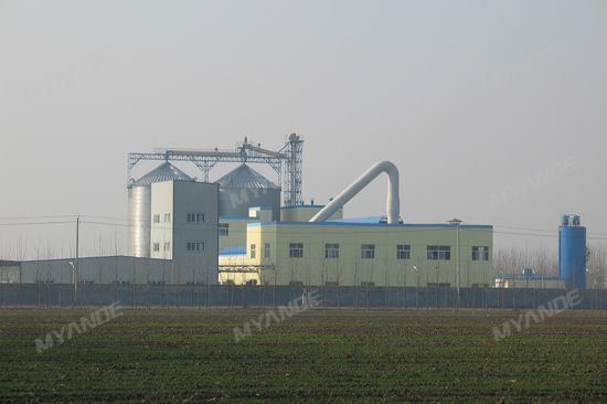 Corn Starch Processing Line with High Quality