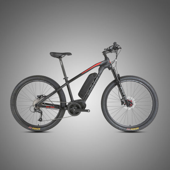China Supplier MID Drive Bafang G350 36V350W Motor Fat Tire Electric Bike