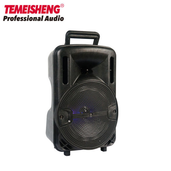 Temeisheng Audio Karaoke 8 Inch Hot Selling Cheap Handled Bluetooth Speaker