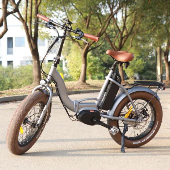 20 Inch Fat Tire Electric Bike 48V 500W Pedal Assisted Folding Ebike