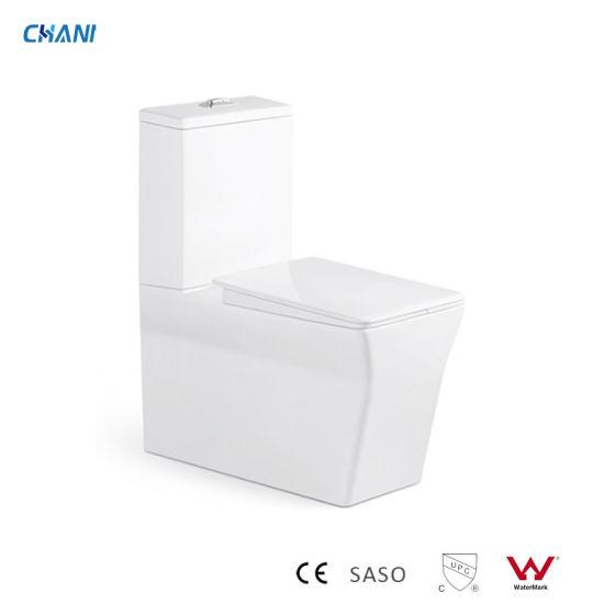 European and Watermark Toilet Five Star Hotel Bathroom Ceramic Washdown Wc Dual Flush Two-Piece Toilet (QT-2063)