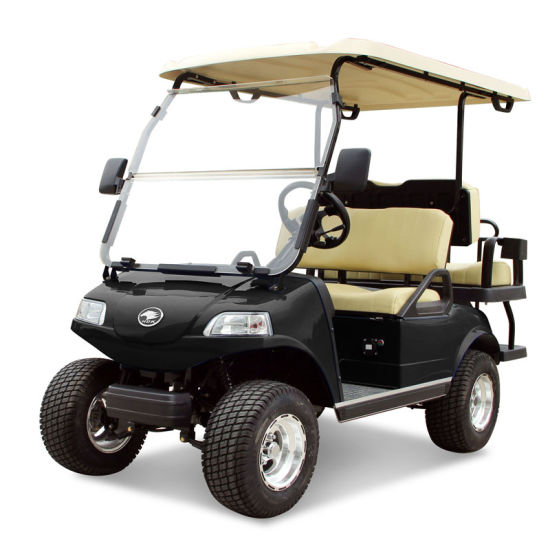 Golf Cart 2+2-Seater Electric Cart Black Utility Vehicle