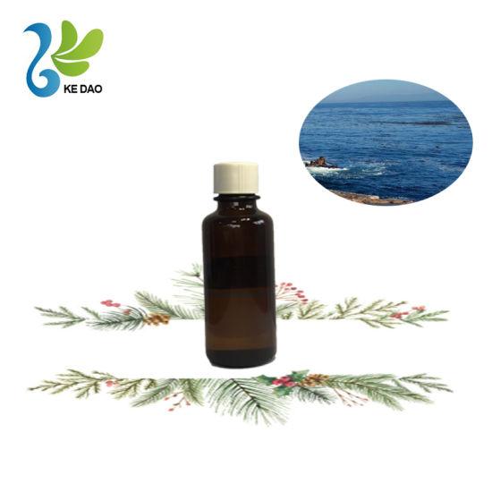 Ocean Scented Fragrance Oil for Car Perfume