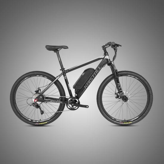 China 36V 350W 27.5 /29er OEM Mountain Bicycle Electric Bike
