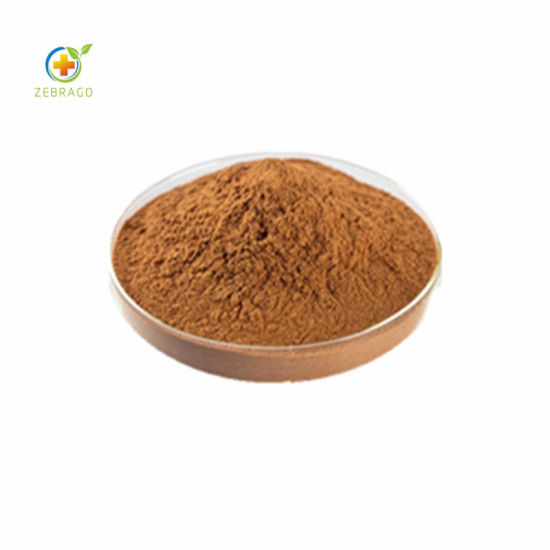 Zebrago Offer Best Cinnamon Bark Extract with 10% Polyphenols pictures & photos