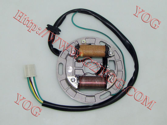 Motorcycle Magneto Stator Comp (AX-100)
