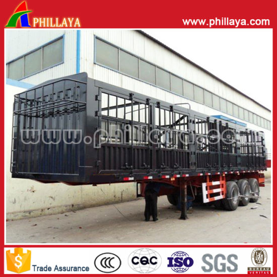 China Brand New 30tons Three Axles Livestock Trailer for Sale pictures & photos