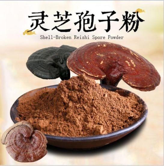 Lingzhi Ganoderma Lucidum Shell-Broken Spore Powder Reishi Mushroom Extract