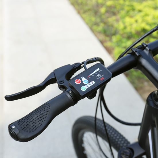 Leopard Rider-Mountain Electric Bike with High-Precision Shaft Drive pictures & photos