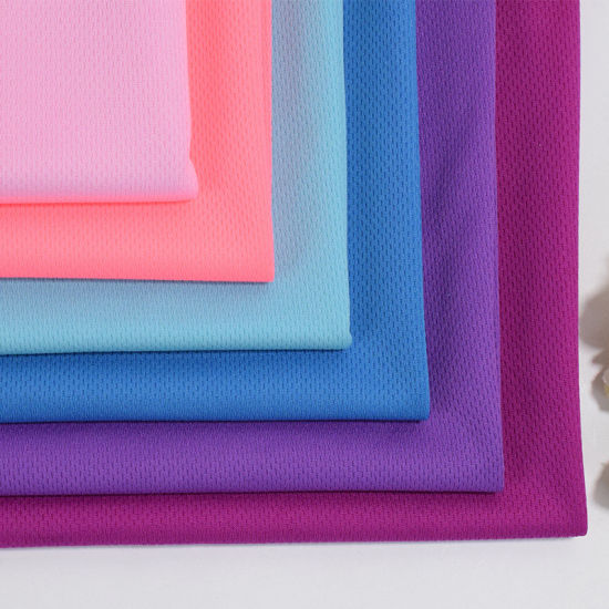 Interlock 100%Polyester Bird Eye Mesh Dri Fit Fabric for Activewear