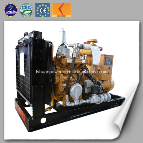 CE Approved Small Biogas Genset 30kw Biogas Generator