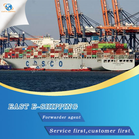 Reliable China Freight Shipping Agent to Southeast Asia pictures & photos
