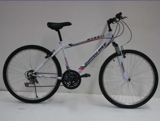 China Manufacturer Cheap Mountain Bike - China Mountain Bike ...