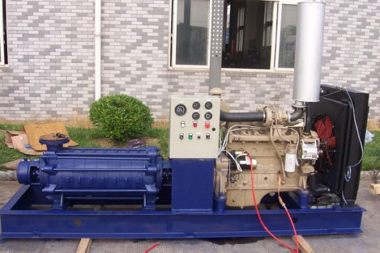 Horizontal Multi Stage Pump (D) pictures & photos