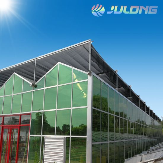 Single Layer 5mm Tempered Glass Venlo Greenhouse Vertical Hydroponic System Green House for Growing