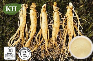 100% Natural Ginseng Root Extract/Ginseng Extract CAS No.: 90045-38-8 pictures & photos