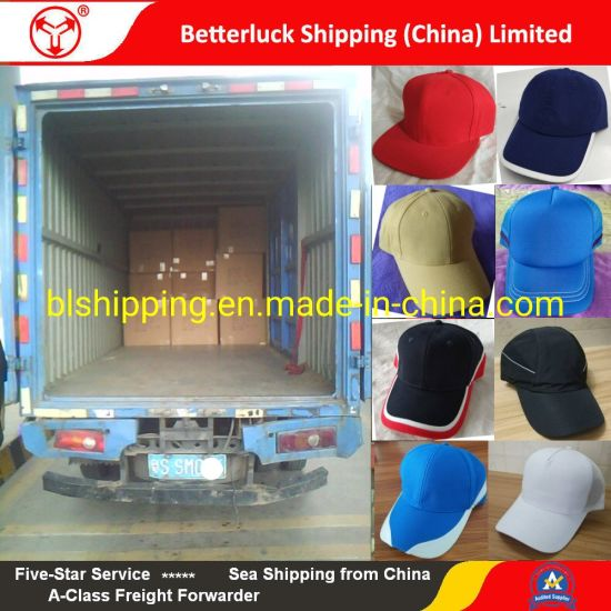 reliable Shipping agent from Dongguan to Auckland freight Logistics service pictures & photos