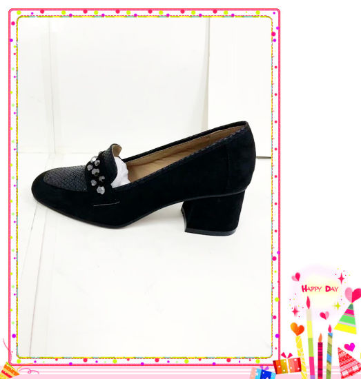 Fashion Lady Shoes New Style