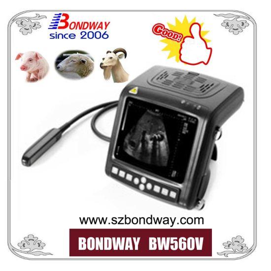 High Quality Medical Instrument Ultrasound Scanner, Veterinary Ultrasonic Machine, Ultrasonic Transducer Price, Ultrasound Scan Equipment