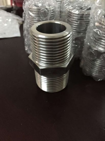 Stainless Steel 316/304 Hex. Nipple pictures & photos
