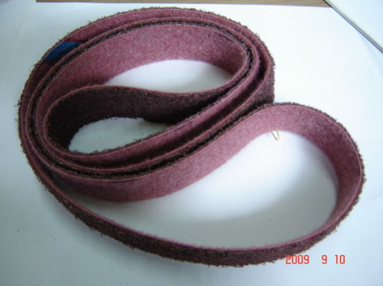 Surface Conditioning Belt (FPS108) pictures & photos