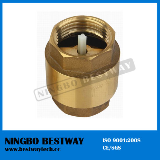 Brass Vertical Check Valve with Plastic Core