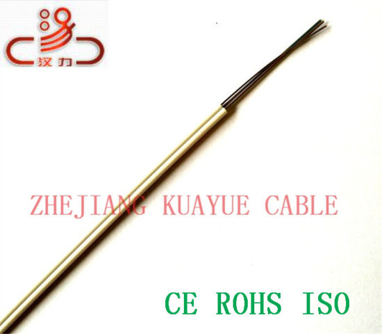 Indoor FTTH Drop Wire Fiber Optic /Cable Network/ Communication Cable/ Computer Cable pictures & photos