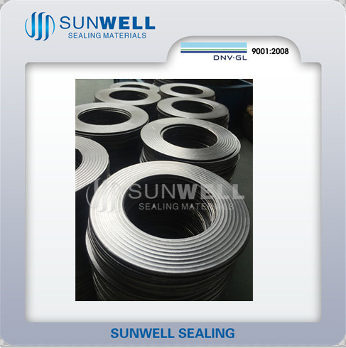 Cmg Metal Sealing Gaskets Corrugated Graphite Gaskets (SUNWELL) pictures & photos