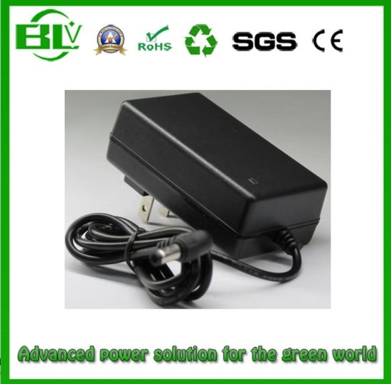 25.2V1a Battery Charger for 6s Li-ion/Lithium Battery of Power Adaptor pictures & photos