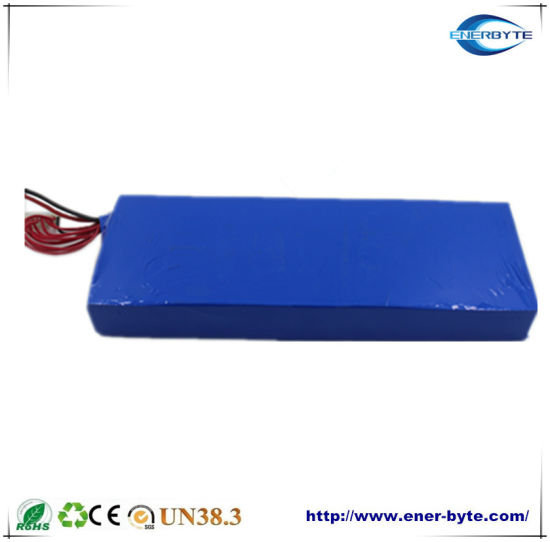 12V 40ah Lithium/Li-ion/LiFePO4 Battery Pack for Energy Storage/E-Scooter